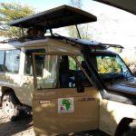 Nairobi orphanage half day tour