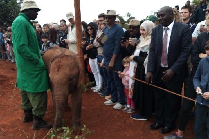 Nairobi Park, Elephants, Giraffe Center And Bomas